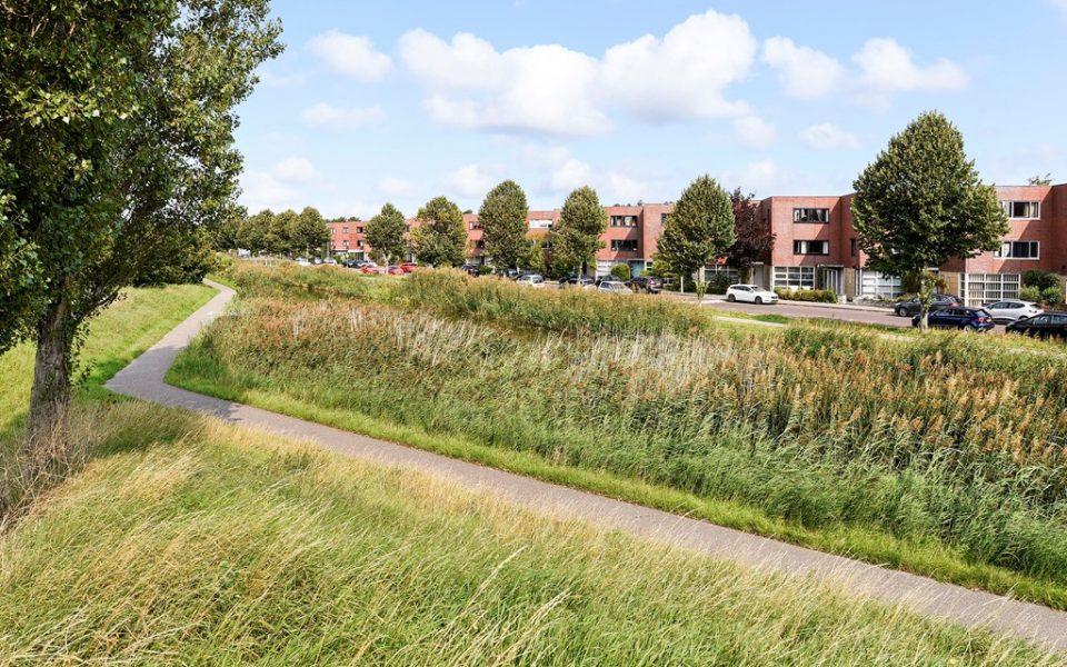 Goudkarpersingel 6 <br> <small>2492 NE Den Haag </small>